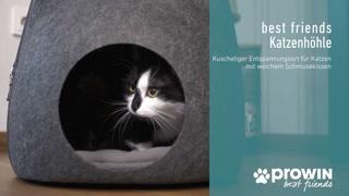 best friends Katzenhöhle und Fellpflegehandschuh cherry
